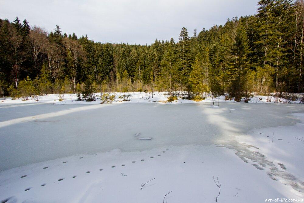мертве озеро, Кам'янка