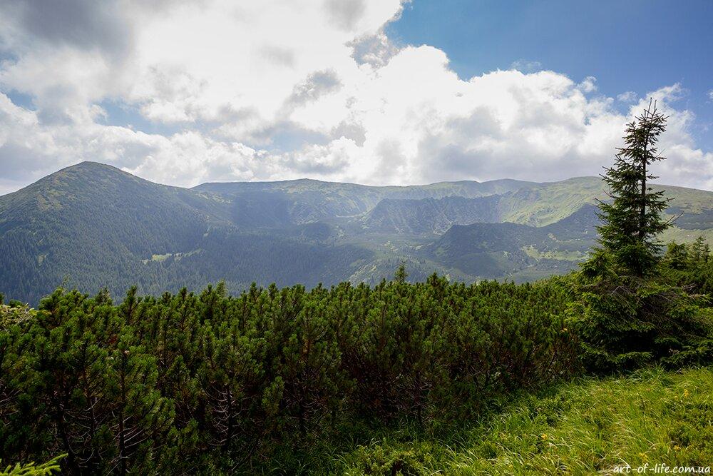 маршрут Чорногорою - Заросляк - Шпиці - під Данціжем - Говерла
